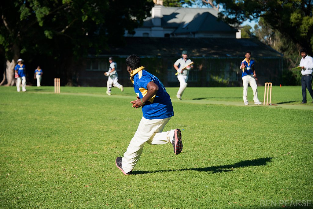refugees playing cricket on oval