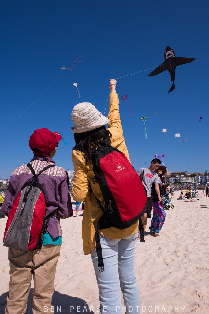 Australian Kite Flying Society- Bondi Beach- September 2015