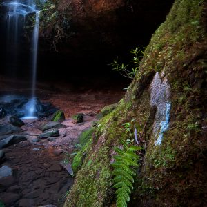 Fern Falls - Ben Pearse photography
