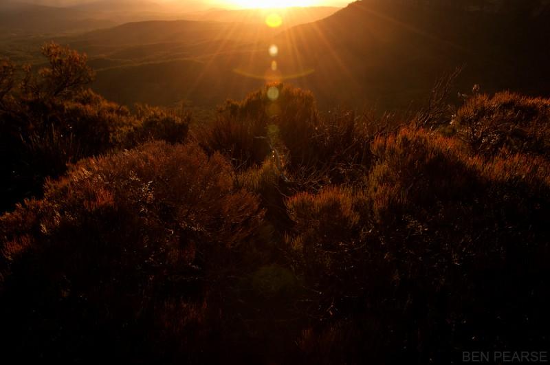 Golden light - Ben Pearse Photography