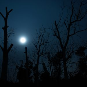 Moonrise Through the Mist - Ben Pearse Photography