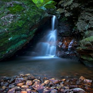 Tucked Away - Ben Pearse Photography