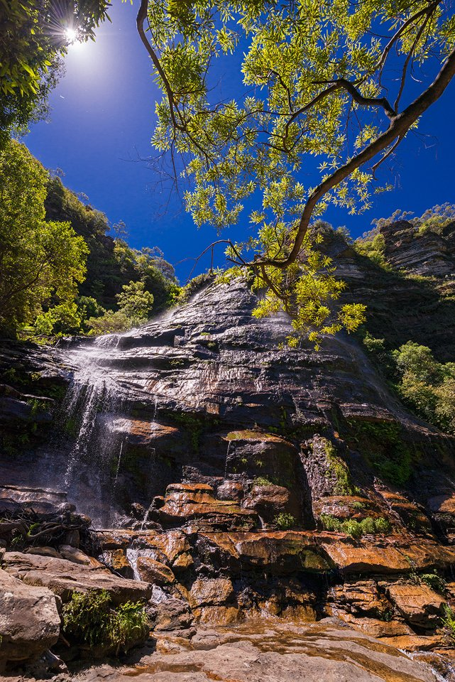 Summertime in the Blue Mountains