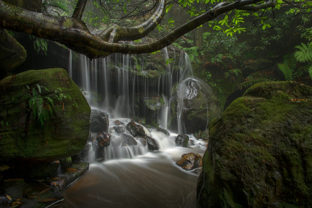 Water of Life- Blue Mountains photographer Ben Pearse