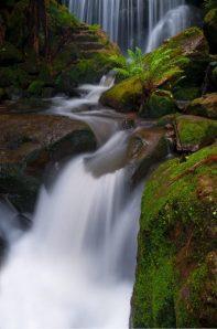 unframed Weeping Rock- Blue Mountains waterfall print