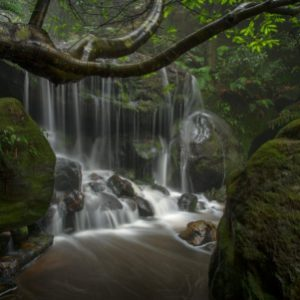 unframed Water of Life- Blue Mountains waterfall print